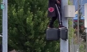 Mysterious Traffic Pole Dancer