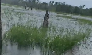 Woman documents excessive flooding from Hurricane Dorian