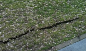 Crack in Earth Seems to Breathe After Earthquake