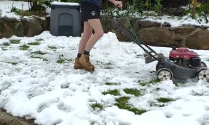 A Mow Through Snow