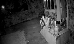 Burglars Run Screaming After Waking Homeowner