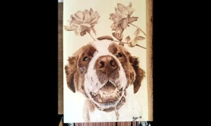 Pyrography Pet Portrait