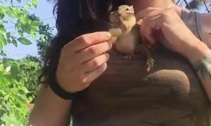 Chipmunk Fills Cheeks with Peanuts