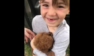 Kid ecstatic after receiving brand new puppy