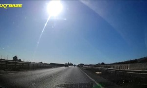 Piglet Near-miss on Highway
