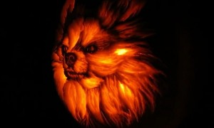 Artist carves incredibly realistic dog-o-lantern pumpkin