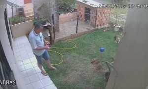 Man Turns Backyard Upside Down