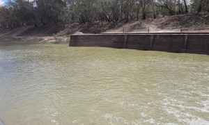 Darling River Flows over Bourke Weir