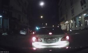 Fleeing Animal Crashes into Car