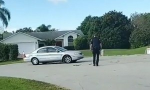 Florida dog puts car in reverse and drives in circles for an hour
