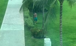 Stumbling Man Trips on Lawn