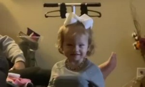 Toddler Cracks Parents Up During Thanksgiving
