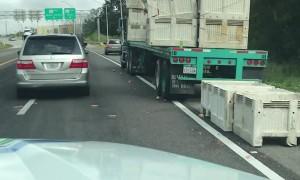 A Grapefruit Fiasco on the Freeway