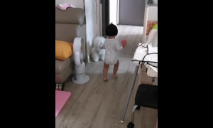 Toddler adorably plays fetch with her puppy