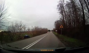 Surprise Deer Causes Rollover