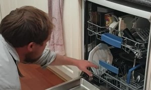 Deadly Snake Discovered in Dishwasher
