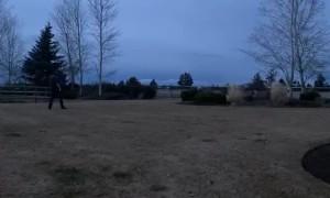 Meteor Blazing Across the Oregon Sky