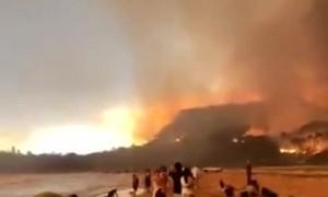 Beach-goers witness insane Australian bushfires