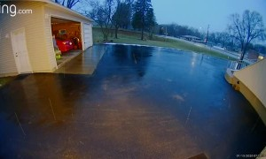 Woman's Surprise Sip on Icy Driveway