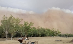 Menacing Dust Storm Sweeps over Town