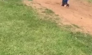 Long Jump Goes Face First