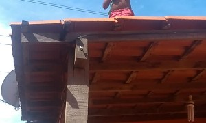 Young Child Playing on Roof and Dad Saves Him