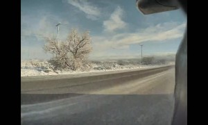 Barely Dodging a Dog Crossing Icy Road