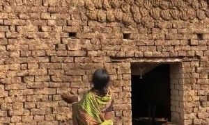 Woman has Incredible Aim with Dried Dung