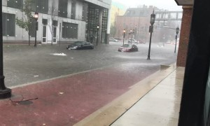 Man Uses Cup to Remove Water From His Waterlogged Car on Flooded Street