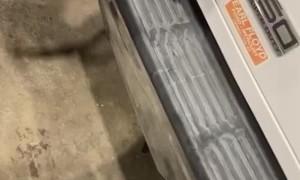 Restoring Bumper Plastic on a Budget