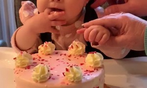 Cute Baby Wants the Whole Cake