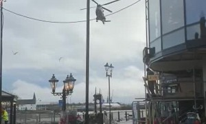 Military Helicopter Lands In The Heart Of Cardiff Bay