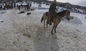 Horse Drawn Ski Slalom