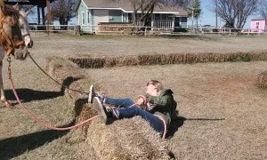 Horse Training Hay Bail Fail