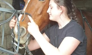 Horse Doesn't Want to Wear Bridle