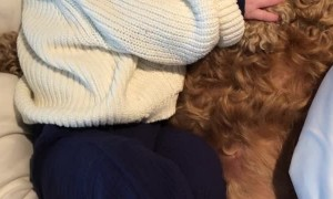 Baby Takes a Nap With Fluffy Doggy