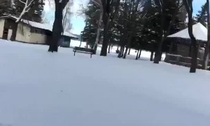 Ice Skating Through Trees