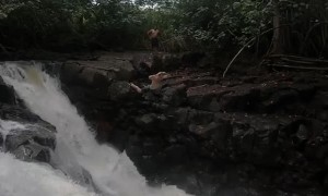 Belly Flop Over Waterfall