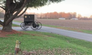 Self Powered Amish Buggy