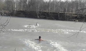 Dog Doesn't Wait for Saving from Frozen River