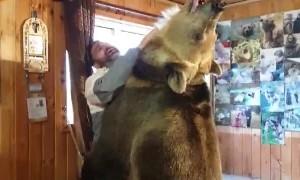 Big Ole Bear Wants a Hug