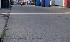 Mini Bike has a Big Crash