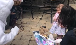 Toddler Unsure about the Easter Bunny