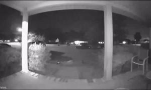 Doorbell Captures Step Slip Up