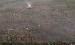 Huge Hail Landing in Flooded Field