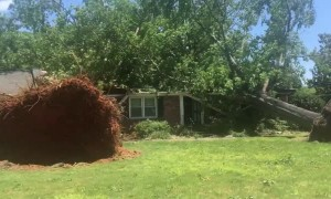 Intense Storm Blows Trees into Houses in South Carolina