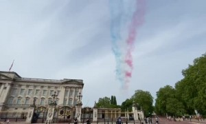 Witnessed the Royal Air force  flyover at Buckingham Palace in celebration of VE Day