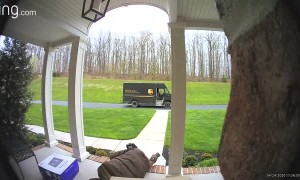 UPS Delivery Driver Trips on Stairs