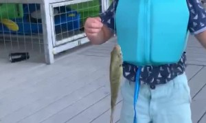Boy Catches His First Fish on Camera