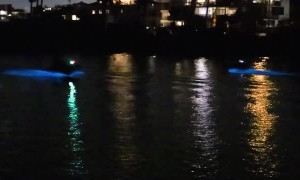 Jet Ski Trails Lit by Bioluminescent Algae